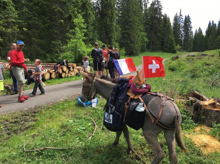 Randonnée avec un âne (libre 1 journée)